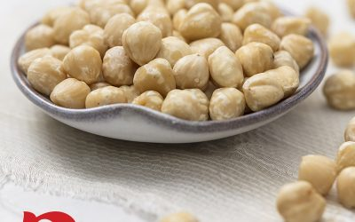 Raw Shelled Blanched Hazelnuts